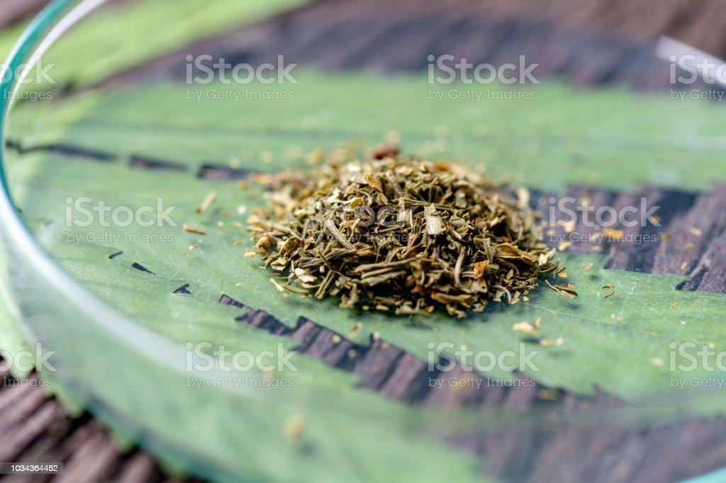 インドにおける大麻文化