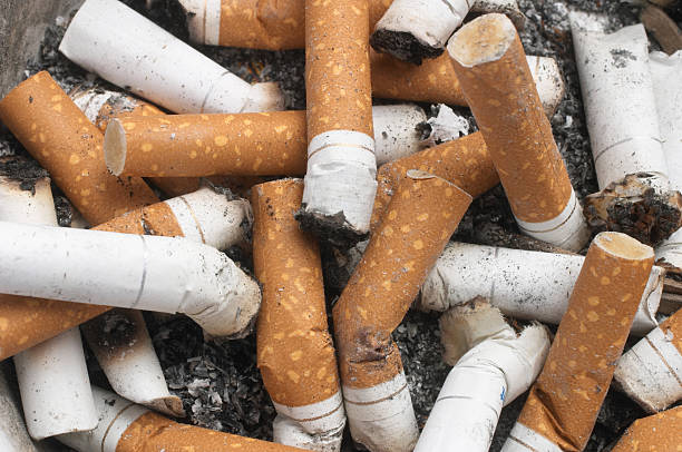 Background Of Cigarette Butts stock photo