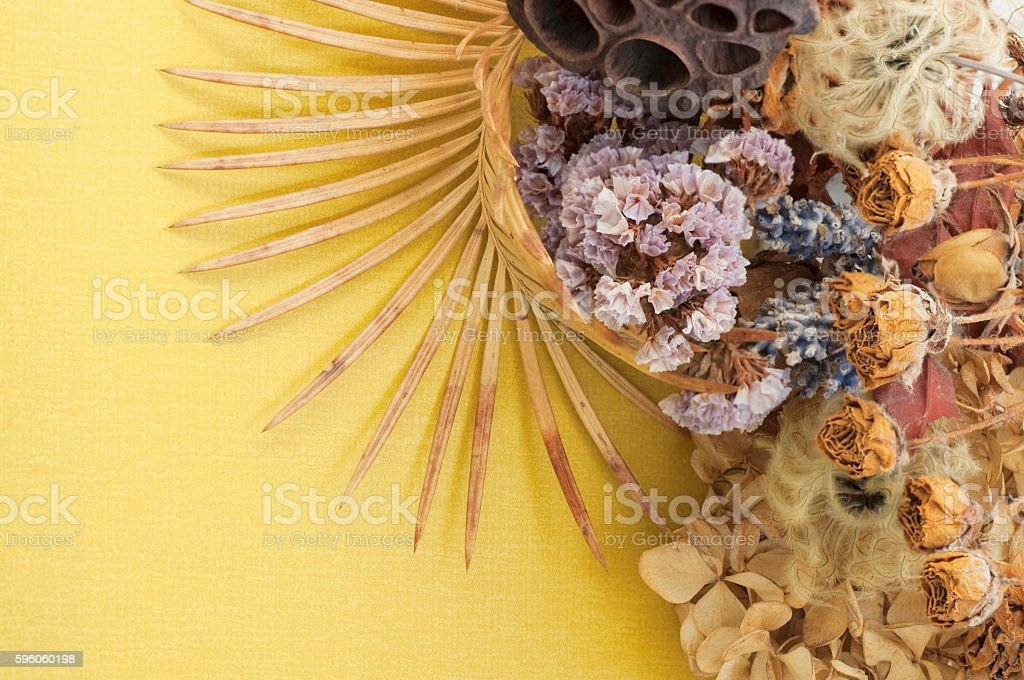 background of dry flowers royalty-free stock photo