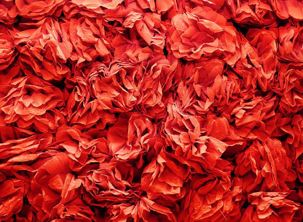 Background of flowers made from red a crepe paper picture id505522100?b=1&k=6&m=505522100&s=612x612&w=0&h=9c9vukgtv4kjqxopz5iedxtz xvwstnmkqpkttx4pf4=