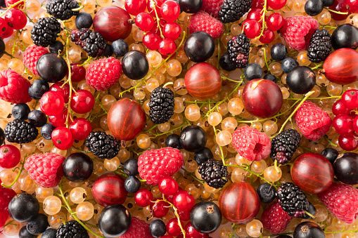istock Background of fresh berries and fruits. Ripe mulberries, blueberries, currants, gooseberris and raspberries. Mixed berries and fruits.Top view.Background berries and fruits.Various fresh summer fruits 1211784641