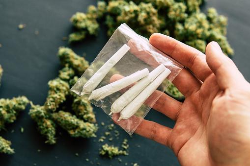 Achtergrond Van Verse Kegels Van Cannabis Bloemen Gecombineerd Met Marihuana Gerold In De Handen Van Een Man Tegen De Stockfoto en meer beelden van Blad