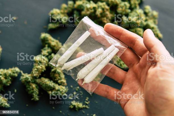 Background Of Fresh Cones Of Cannabis Flowers Rolled Joint With Marijuana In The Hands Of A Man Against The Stock Photo - Download Image Now