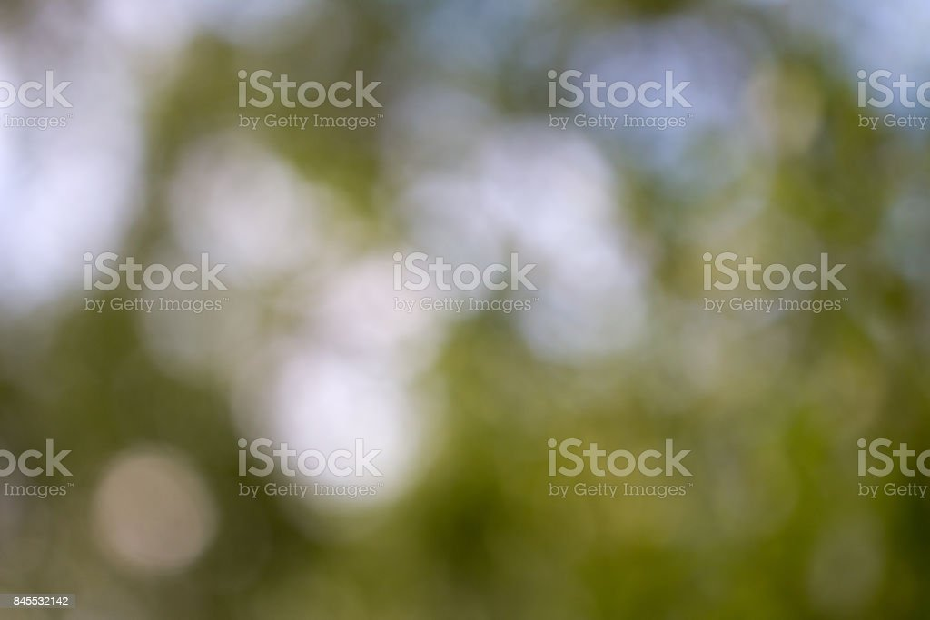 background of green bokeh stock photo