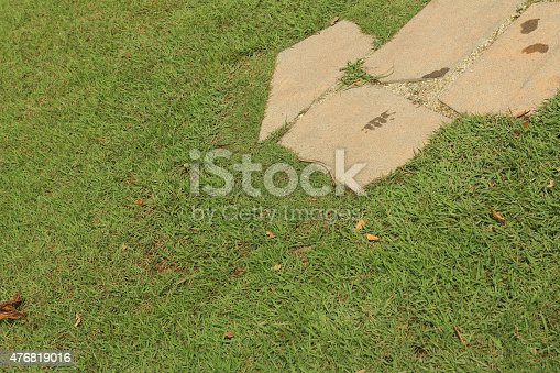 istock background of green grass in the park 476819016