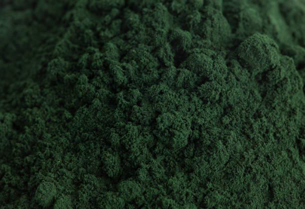 en bakgrund av grön spirulina pulver - spirulinabakterie bildbanksfoton och bilder