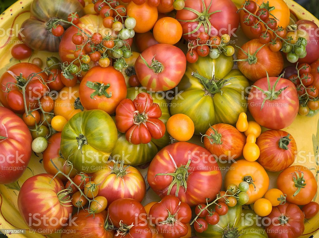 Background of Homegrown Vegetable Produce; Organic Heirloom Tomatoes stock photo