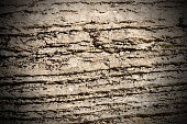 Background of layered rock (limestone) separated by layers of clay. Lessinia stone or Prun stone. Plateau of Lessinia, Verona, Veneto, Italy