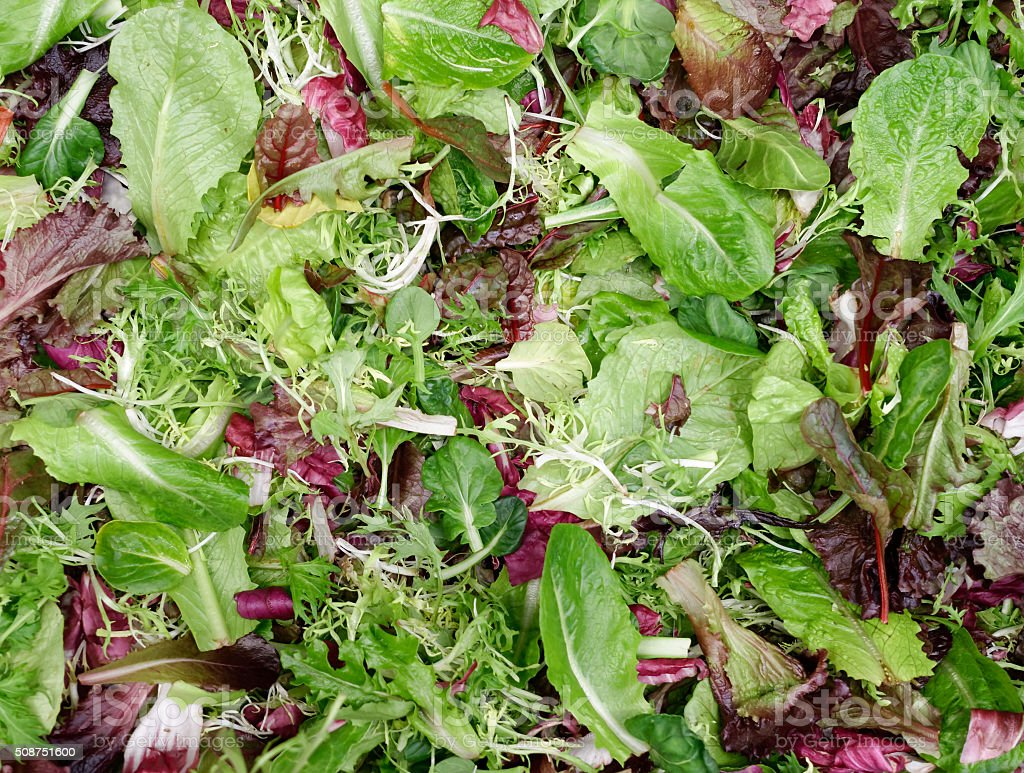 Background of Mixed Leafy Greens stock photo
