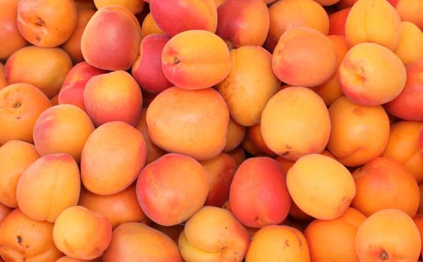 hintergrund von orangenaprikosen zum verkauf im sommer - aprikose stock-fotos und bilder