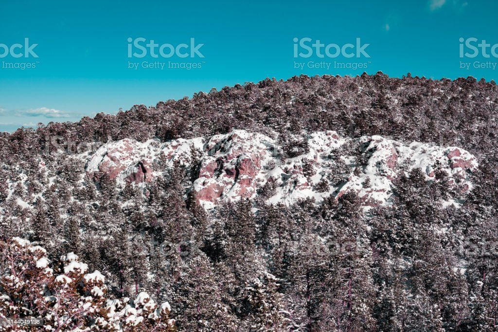 Background of pine trees and snow up on the mountain, winter landscape stock photo