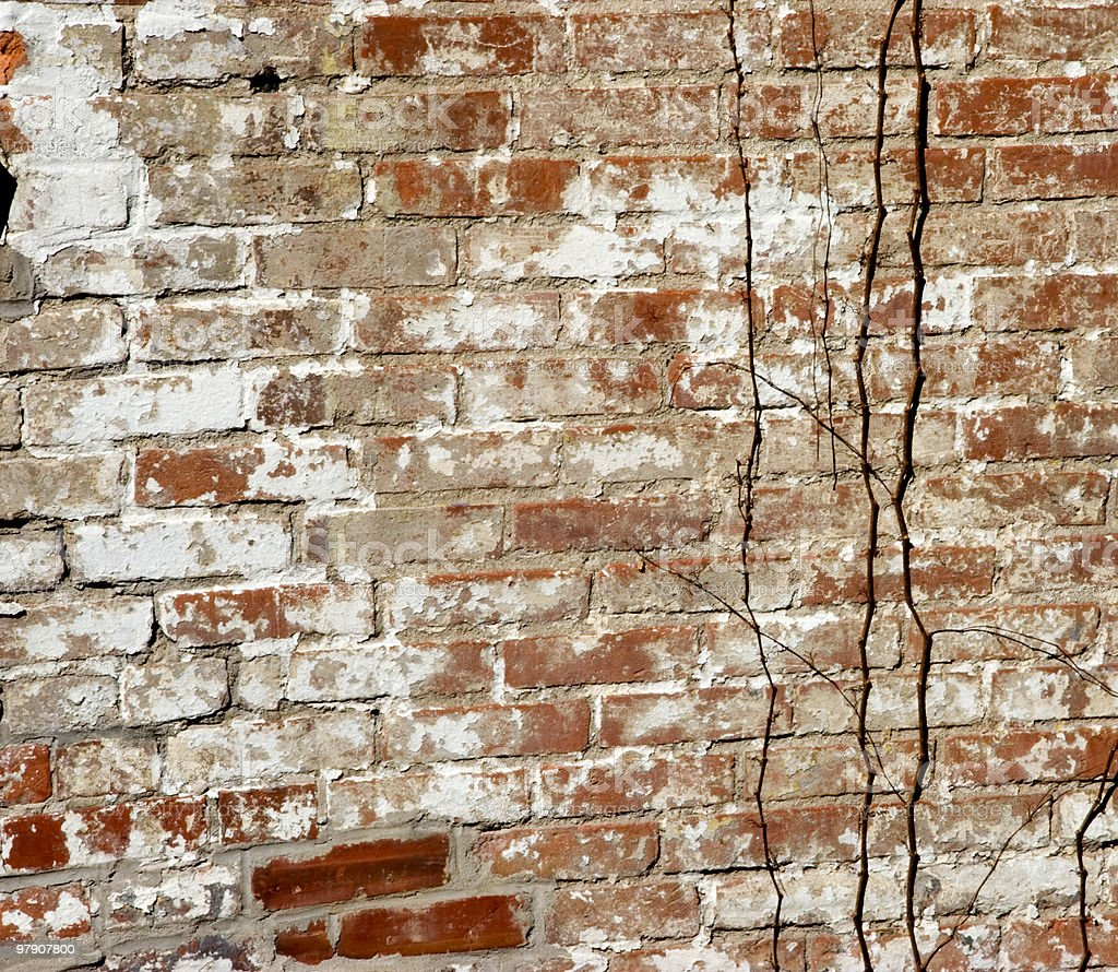 Background of Red Brick royalty-free stock photo