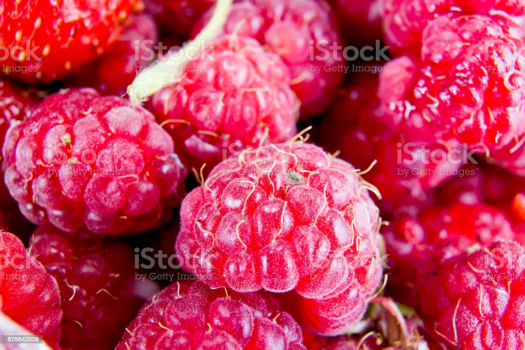 Background of ripe berries royalty-free stock photo