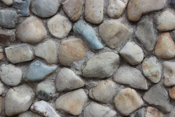 hintergrund von meer-steinen - bemalte muscheln stock-fotos und bilder