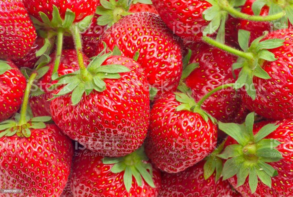 Background of the strawberry fruit closeup royaltyfri bildbanksbilder