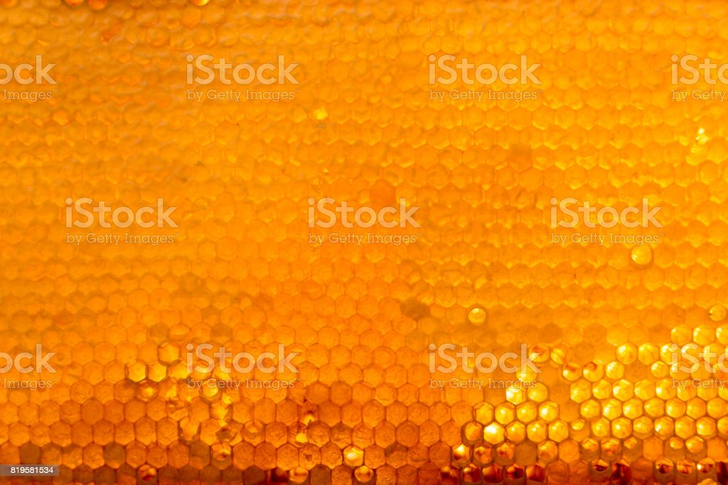 Background texture and pattern of a section of wax honeycomb from a bee hive filled with golden honey stock photo