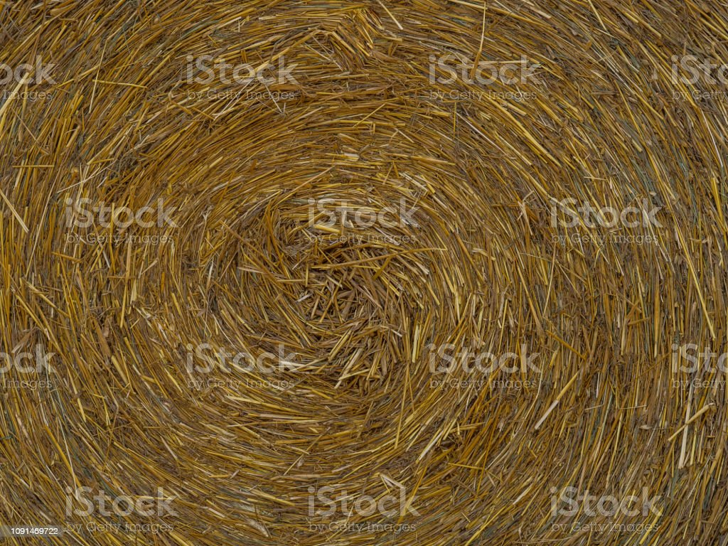 Background, texture. Big bales of straw. stock photo