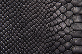Background texture black leather reptiles