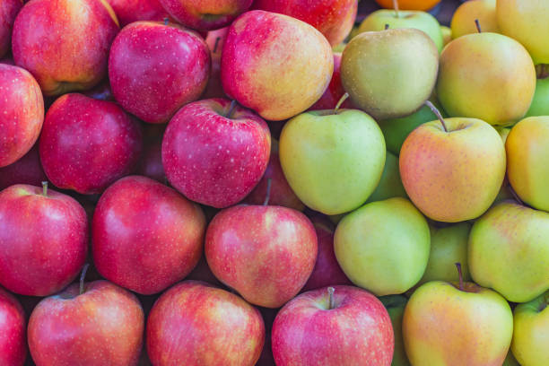 Cтоковое фото background texture colorful apples