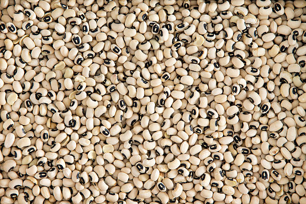 Background texture of black-eyed beans stock photo