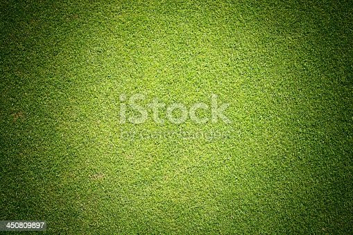 istock Background texture of green grass 450809897