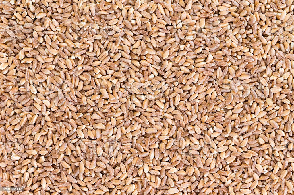 Background texture of pearled farro wheat stock photo