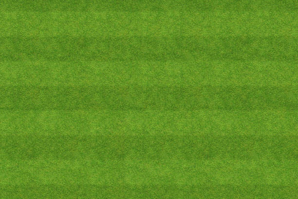 background texture of soccer field stock photo