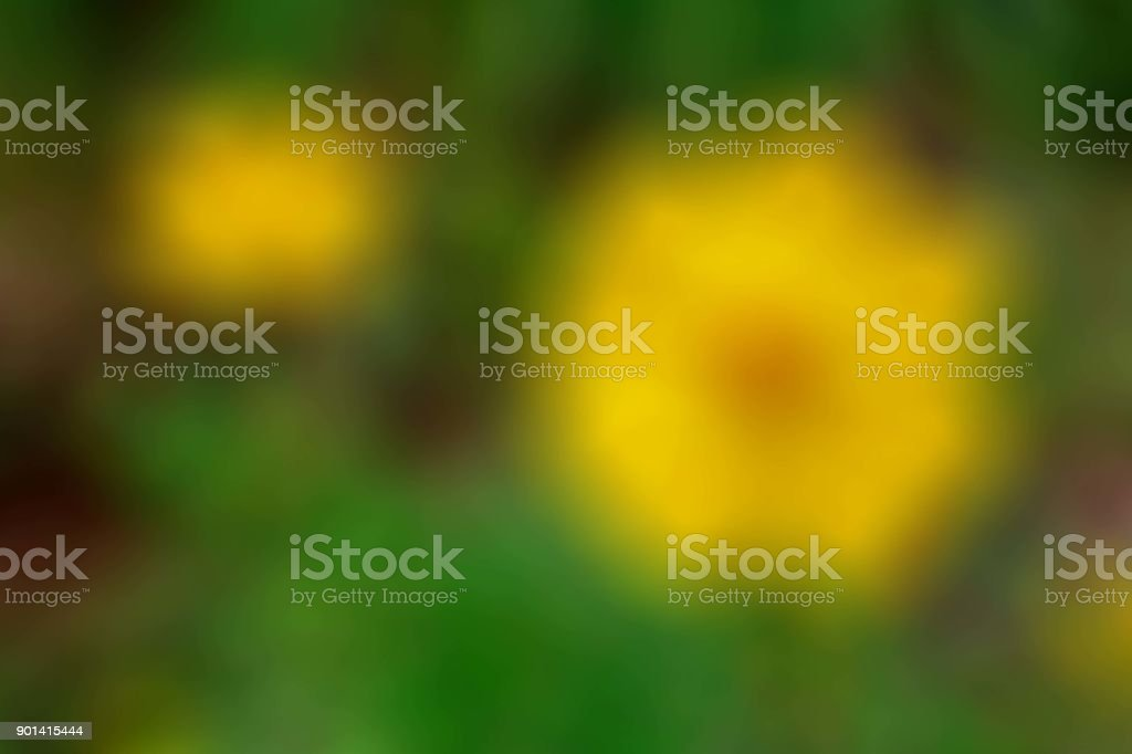 Background Texture with Green and Yellow Blurry Abstract stock photo