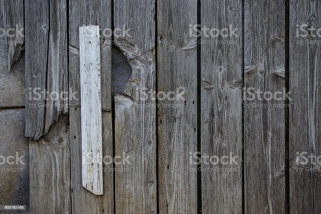 Background Tree Texture Of The Wooden Fence Greygreen Nails Stock