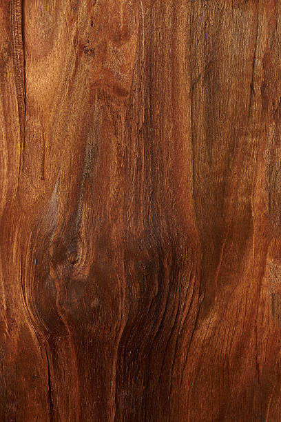 hintergrund walnut - walnussholz stock-fotos und bilder