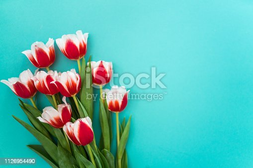 Background with a bouquet of beautiful spring tulips,international women`s day, mother`s day.