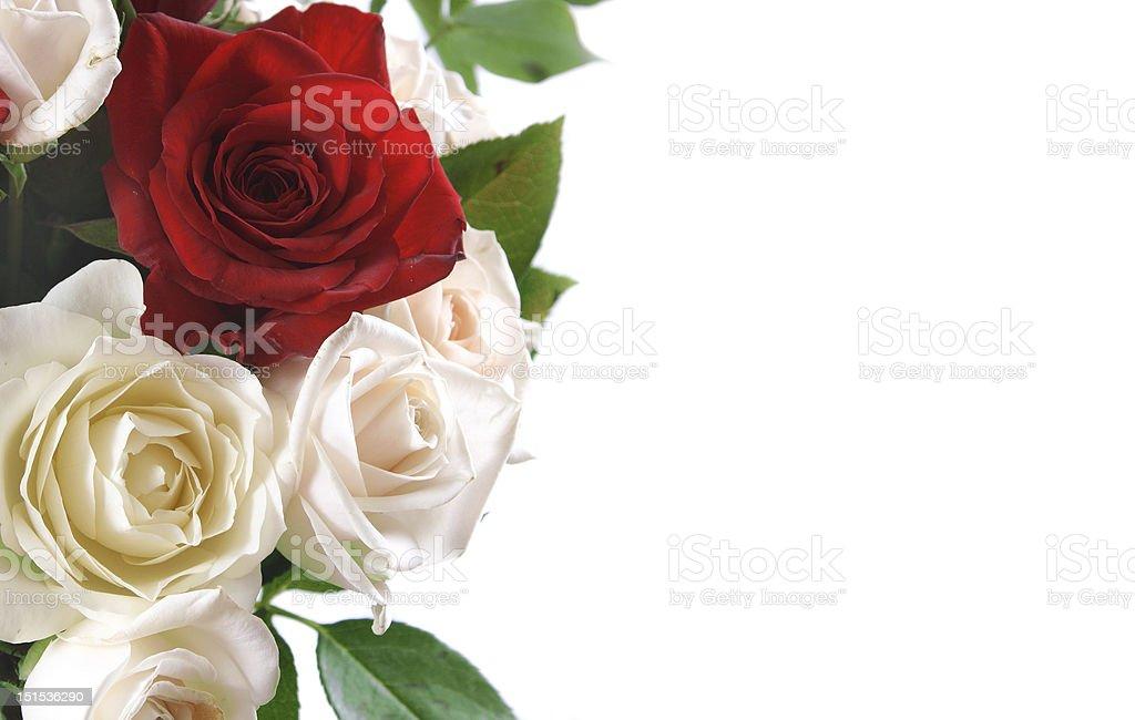 Sfondo Con Una Rosa Fotografie Stock E Altre Immagini Di Bouquet