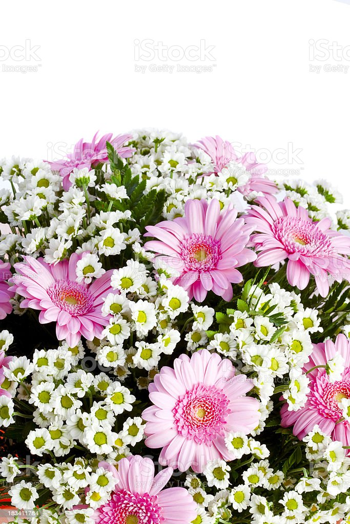 background with different flowers royalty-free stock photo