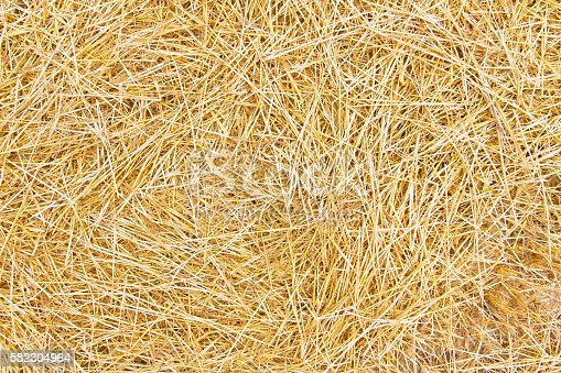 Background or texture with dry straw