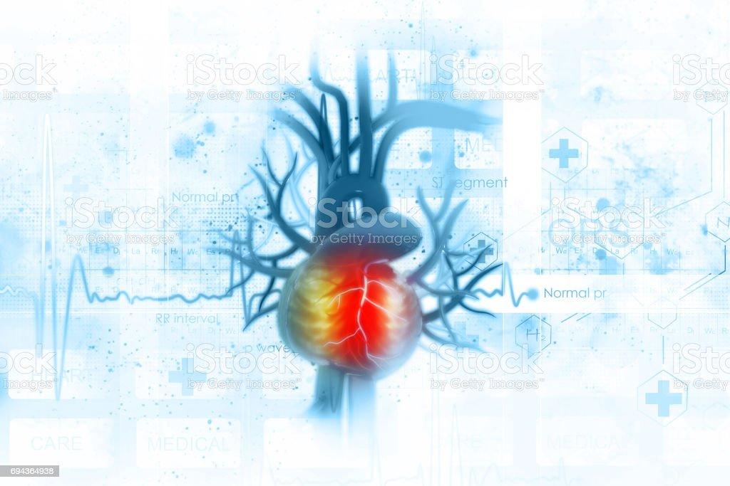 Fundo de ECG com coração humano - foto de acervo