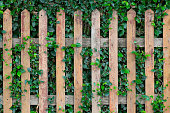 istock background with old wooden fence and green grass 485494127