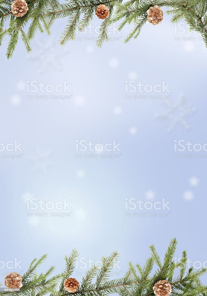 Background with pine branch royalty-free stock photo