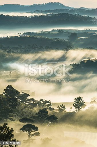 istock Background with pine forest, dense fog, sunrays and farms on the plateau at dawn 1151520049