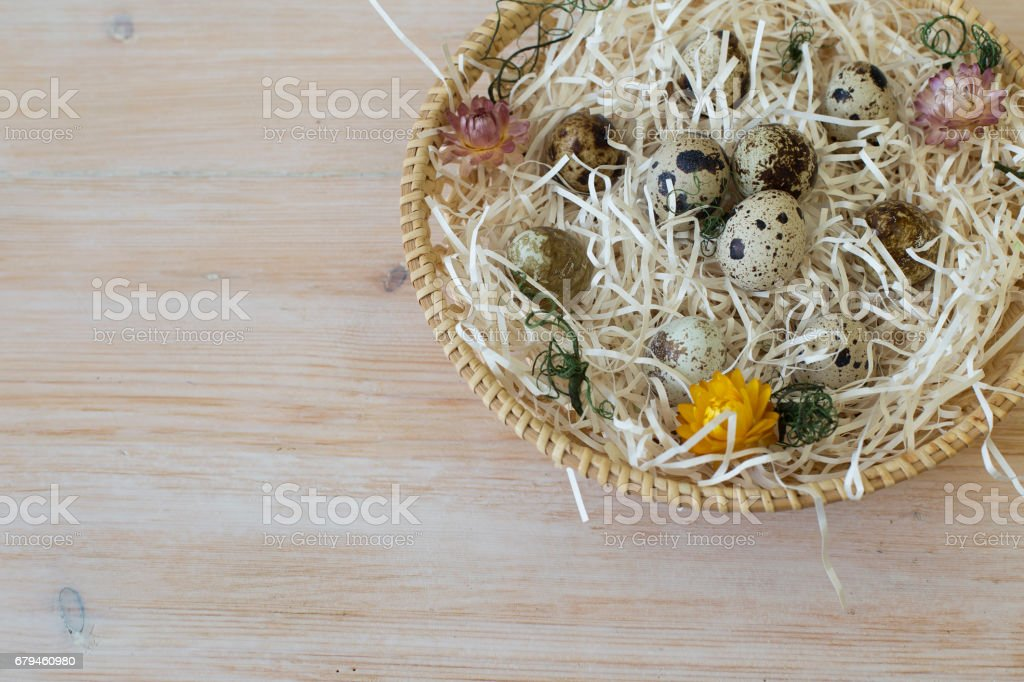 Background with quail eggs royalty-free stock photo