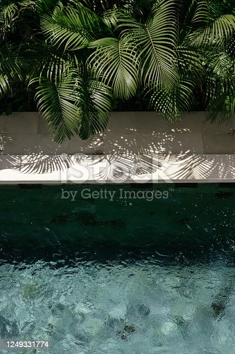istock background with swimming pool and palm leaf 1249331774