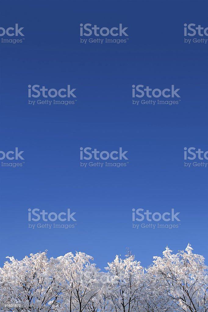 background with winter woods under sky royalty-free stock photo