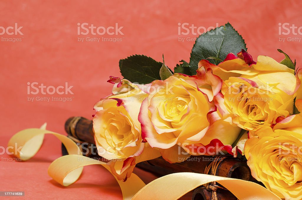 Background with yellow roses royalty-free stock photo