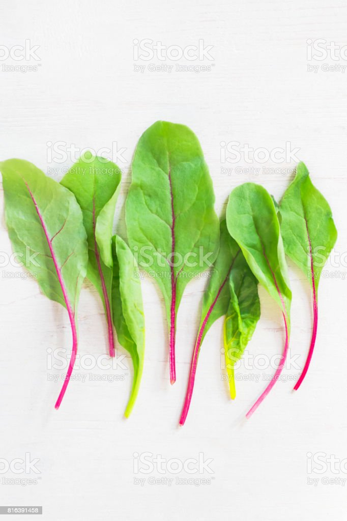 Background with young fresh beet leaves on a white wood. Vertical format stock photo