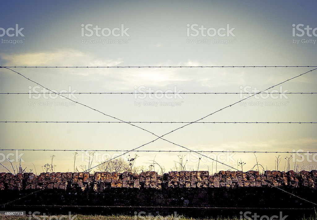 Background WW1 barbed wire and sandbags world war stock photo