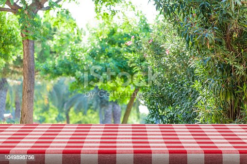 1048926386 istock photo Backgrounds: Red and white checkered tablecloth with green lush foliage at background 1049898756