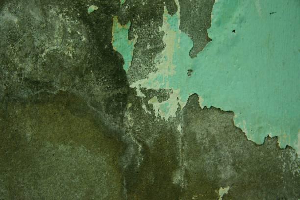 Fonds/Textures - Photo