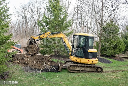 Backhoe digging out a tree root after deciduous tree has been cut down.