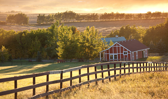 A beautiful red barn on the prairie in fall. A pristine equestrian farm on the Alberta prairie that's backlit by warm, evening light. This scene is complimented with haze and dust in the background. A fence for the corral draws the eye into the scenic. The dramatic lighting makes for a compelling rural image of a rolling and beautiful agricultural region in Canada. Image location is near Okotoks, Alberta.