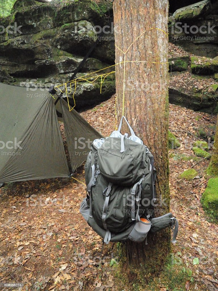 tent hammock hang cacoon youtube town hanging how your to watch trees on