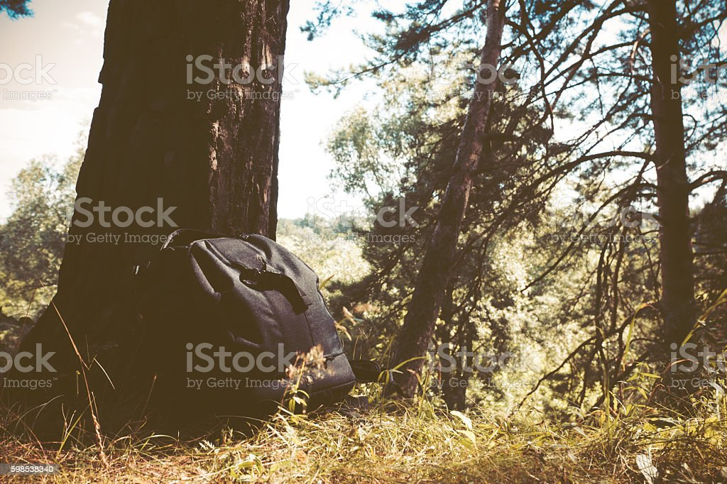 Backpack in the forest photo libre de droits